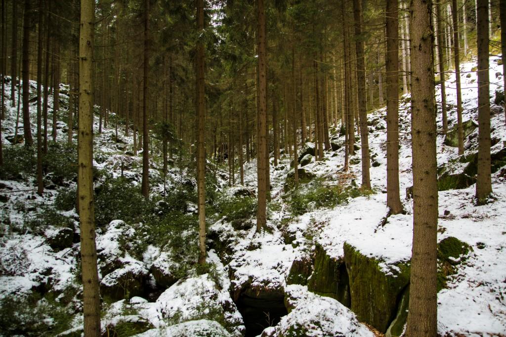 Ania w podrozy - Gory Stolowe - IV 2015 (58)