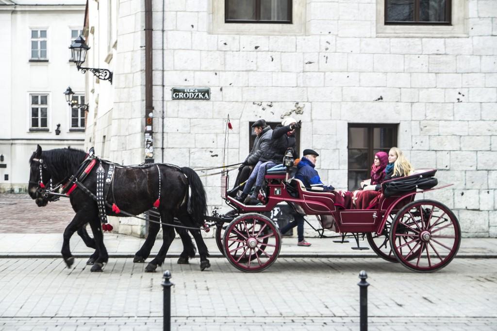 Krakow - Ania w podrozy_Spacer po Krakowie_2015-03-02 (20)
