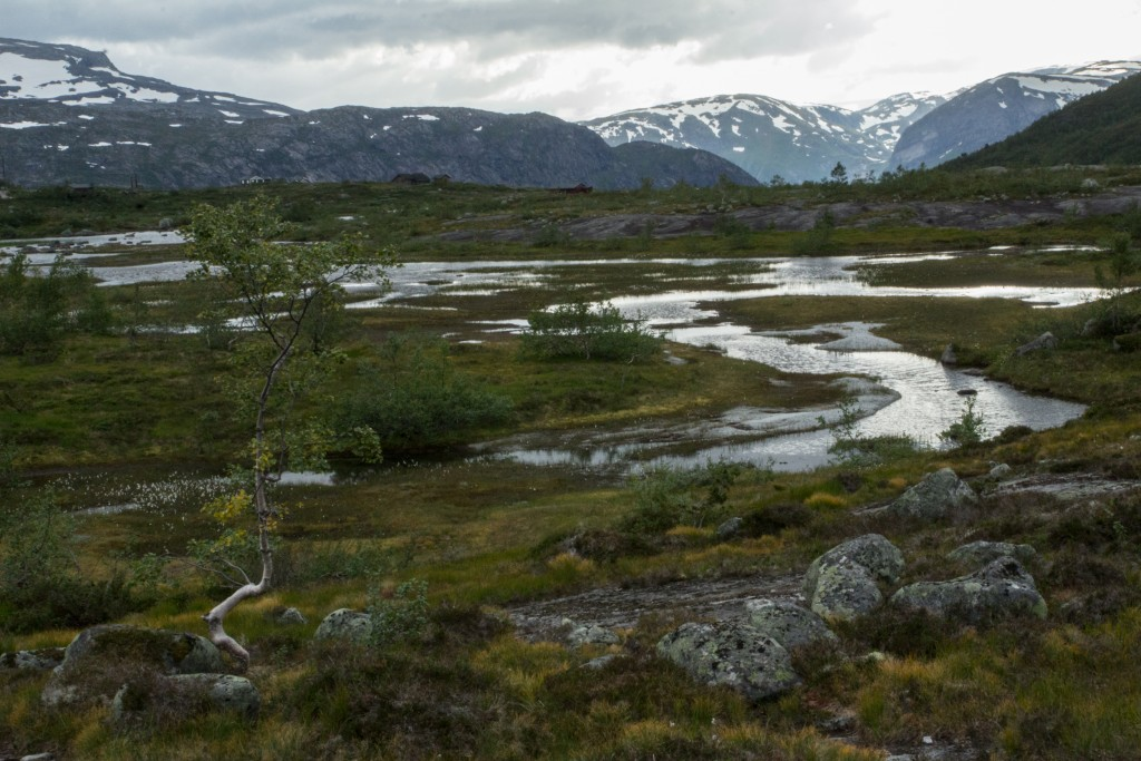 Ania_w_podrozy-blog-Norwegia-2015 (133)