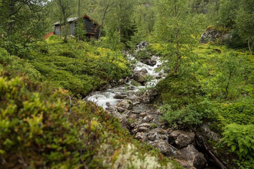 Ania_w_podrozy-blog-Norwegia-2015 (158)