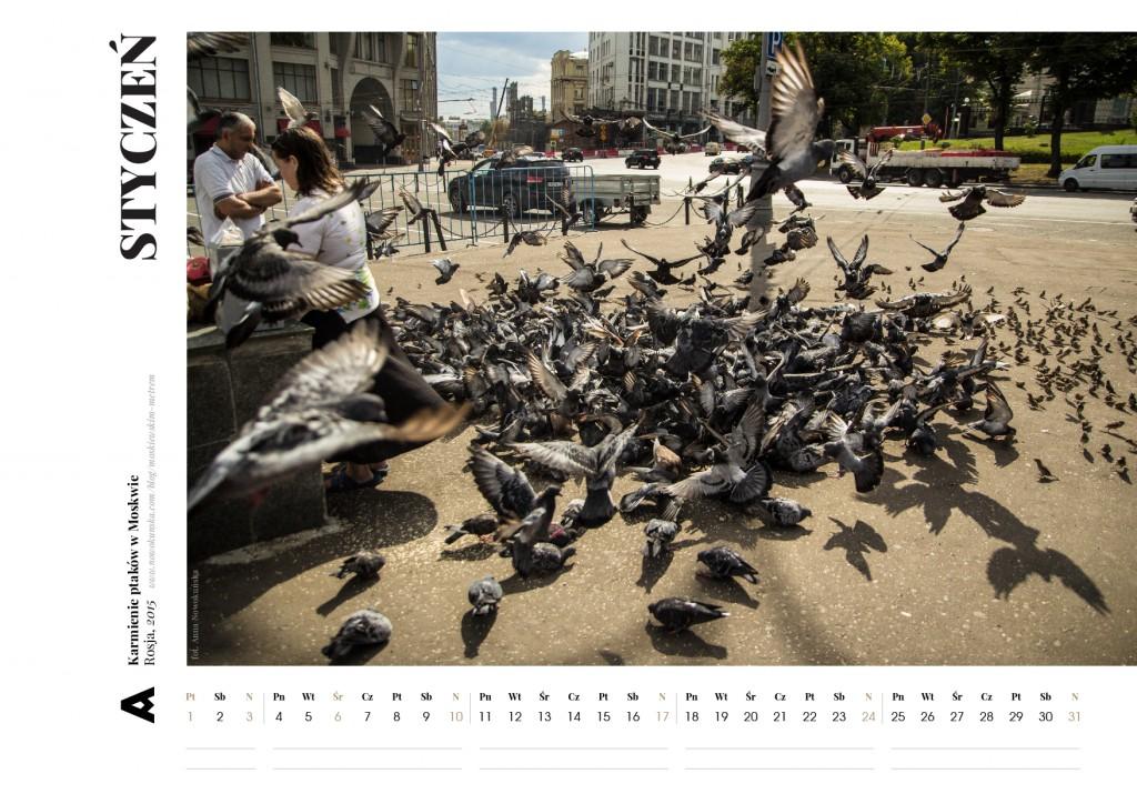 kalendarz_2016_ANIA-4-02