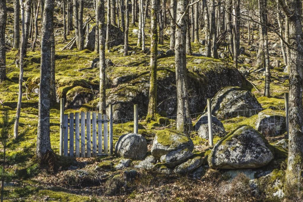 Ania-w-Podróży-2016-Norwegia-Preikestolen-BLOG-31