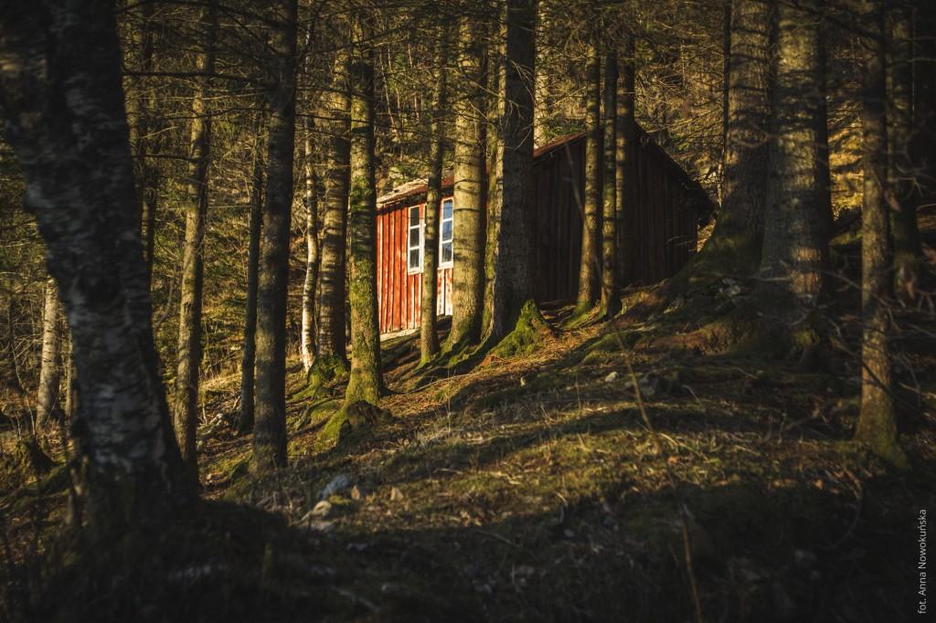 Ania-w-Podróży-2016-Norwegia-Preikestolen-BLOG-64