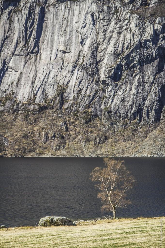 Ania-w-Podróży-2016-Norwegia-Preikestolen-BLOG-92
